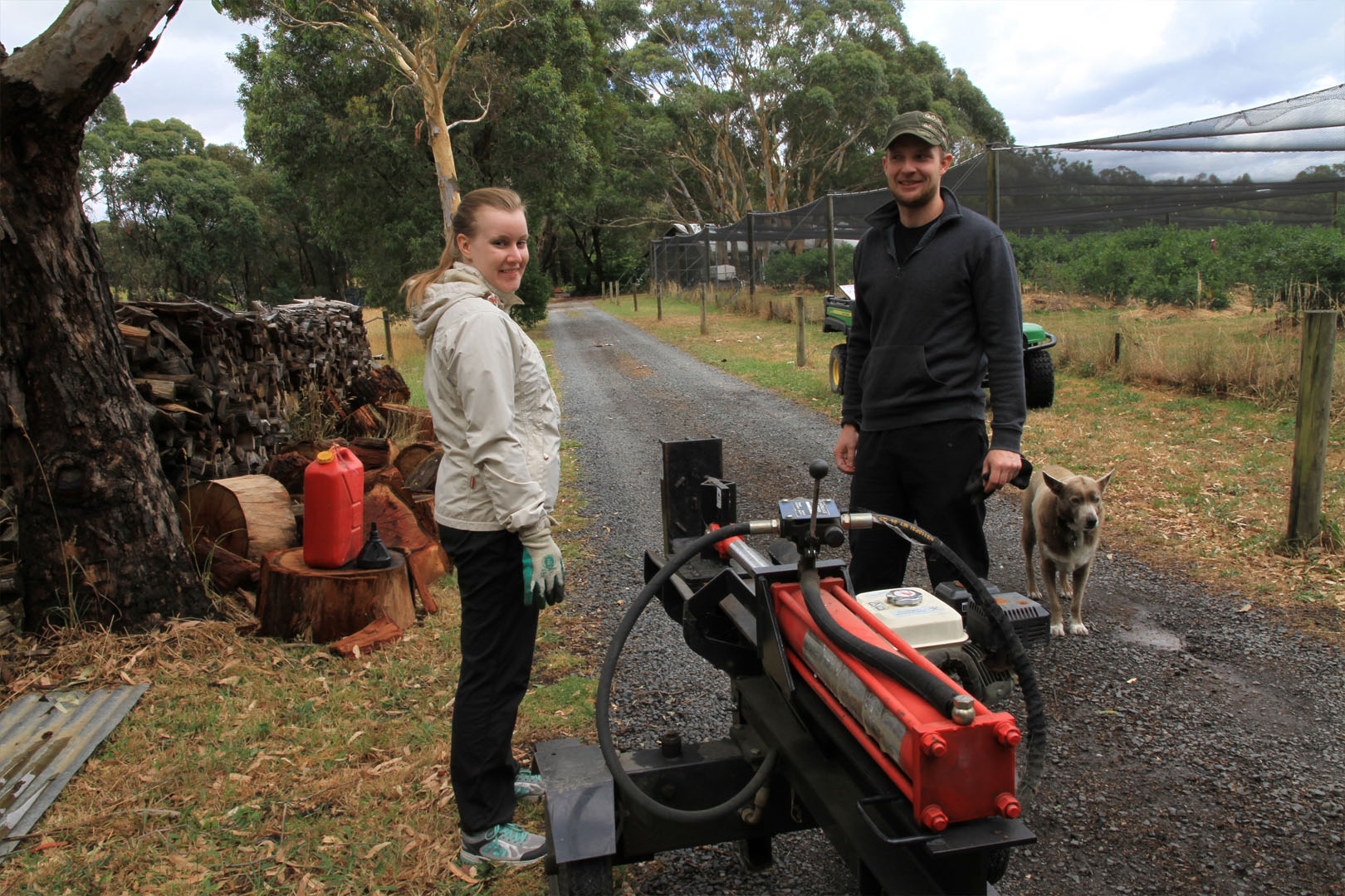wwoof workers emily hill